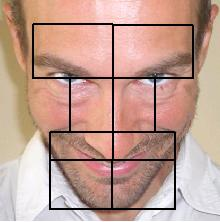 Facial lineaments symmetry